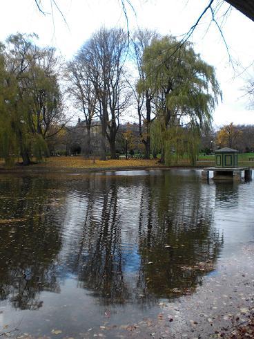 Public-gardens-boston