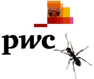 Why does PwC want an Ant's Eye View of the world?